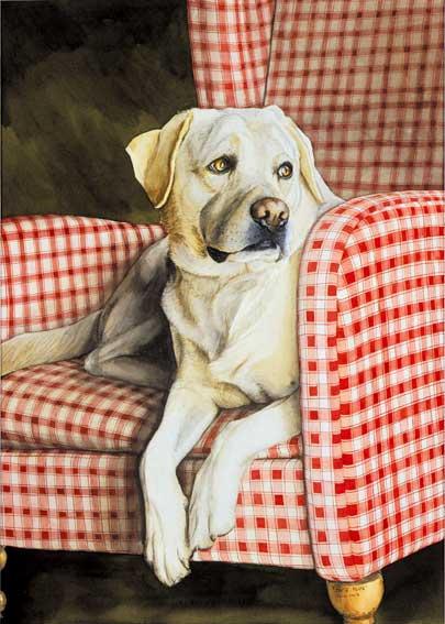 peintre animalier portraits animaux cyrille jubert artiste peintre. Black Bedroom Furniture Sets. Home Design Ideas